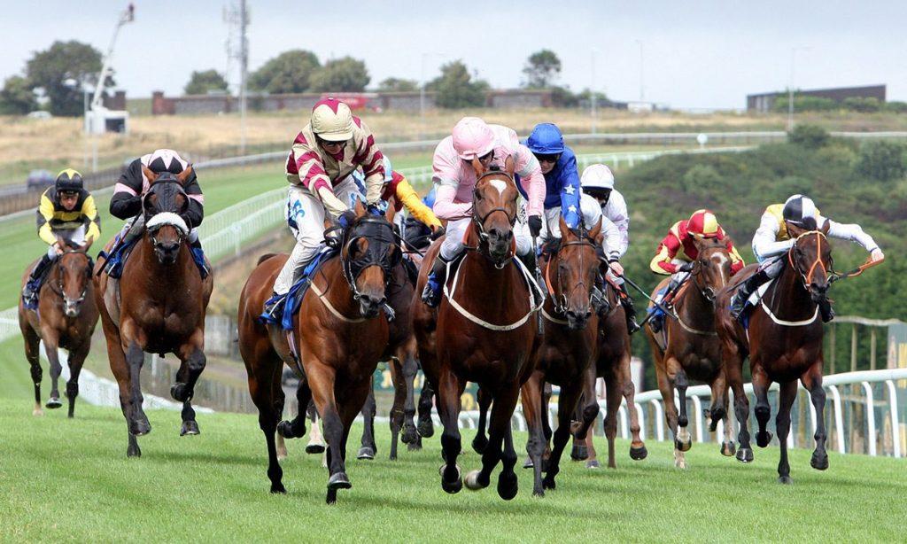 horse-race-1200x720